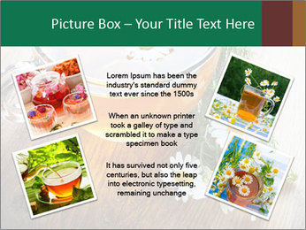 0000071384 PowerPoint Template - Slide 24