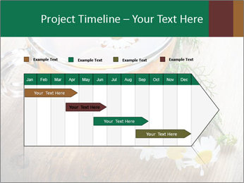 0000071384 PowerPoint Template - Slide 25