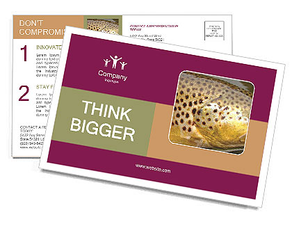 0000071389 Postcard Template