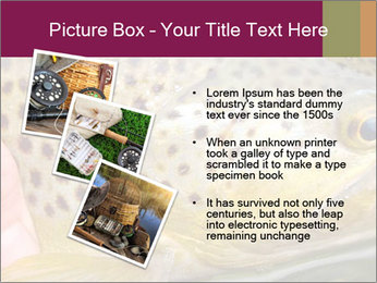 0000071389 PowerPoint Template - Slide 17