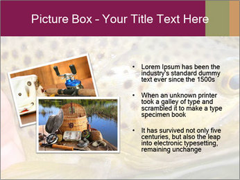0000071389 PowerPoint Template - Slide 20