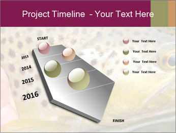 0000071389 PowerPoint Template - Slide 26