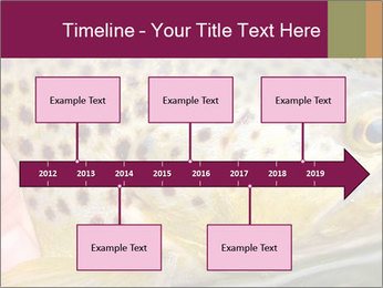 0000071389 PowerPoint Template - Slide 28