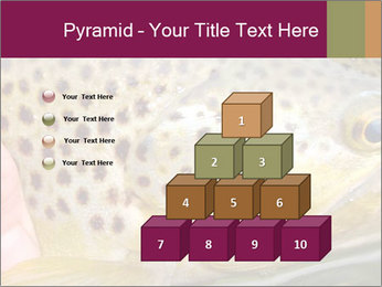 0000071389 PowerPoint Template - Slide 31