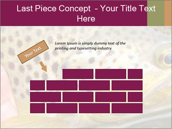 0000071389 PowerPoint Template - Slide 46