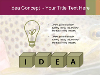 0000071389 PowerPoint Template - Slide 80