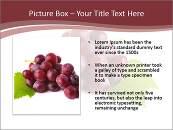 0000071394 PowerPoint Template - Slide 13