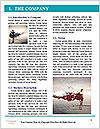 0000071396 Word Template - Page 3
