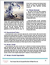 0000071396 Word Template - Page 4
