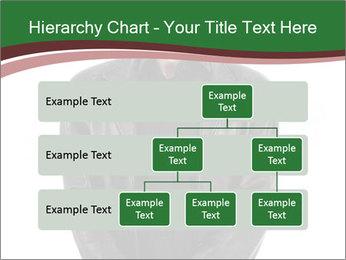 0000071405 PowerPoint Template - Slide 67