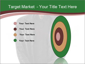 0000071405 PowerPoint Template - Slide 84