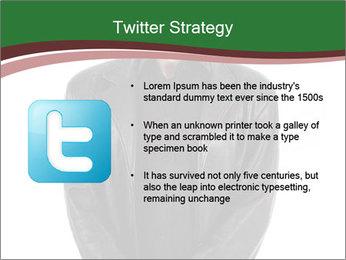 0000071405 PowerPoint Template - Slide 9