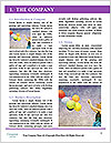 0000071408 Word Template - Page 3