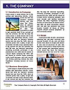 0000071411 Word Template - Page 3