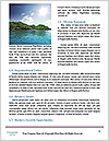 0000071412 Word Template - Page 4