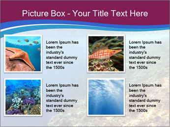 0000071417 PowerPoint Template - Slide 14