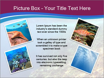 0000071417 PowerPoint Template - Slide 24