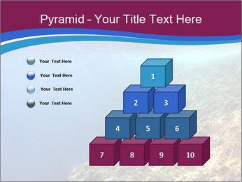 0000071417 PowerPoint Templates - Slide 31