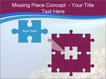 0000071417 PowerPoint Templates - Slide 45