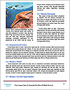 0000071417 Word Templates - Page 4
