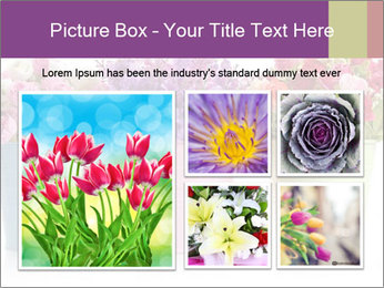 0000071423 PowerPoint Template - Slide 19