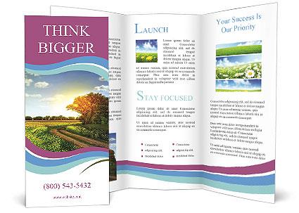0000071424 Brochure Templates