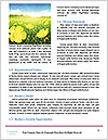 0000071424 Word Templates - Page 4