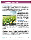 0000071424 Word Templates - Page 8