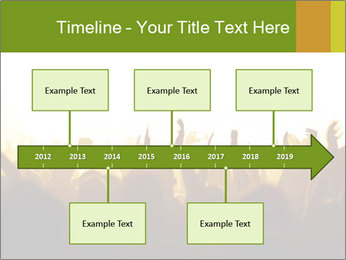 0000071425 PowerPoint Template - Slide 28