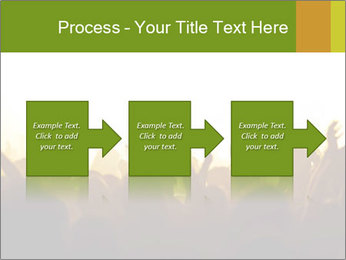0000071425 PowerPoint Template - Slide 88