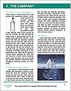 0000071427 Word Template - Page 3