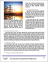 0000071429 Word Template - Page 4