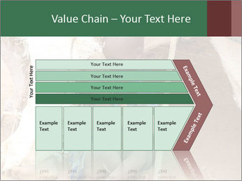 0000071432 PowerPoint Template - Slide 27