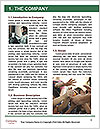 0000071432 Word Template - Page 3