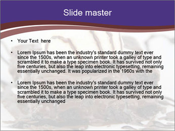 0000071444 PowerPoint Templates - Slide 2