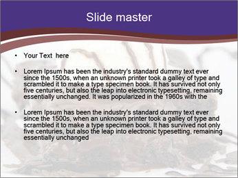 0000071444 PowerPoint Template - Slide 2