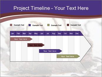 0000071444 PowerPoint Template - Slide 25