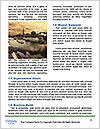 0000071445 Word Template - Page 4