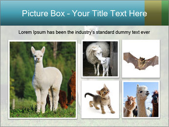 0000071447 PowerPoint Templates - Slide 19