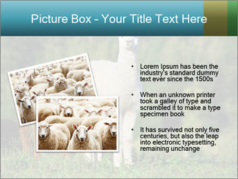 0000071447 PowerPoint Templates - Slide 20