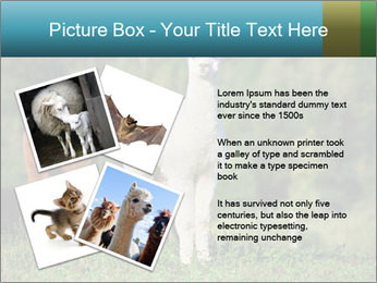 0000071447 PowerPoint Templates - Slide 23