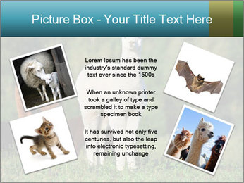 0000071447 PowerPoint Templates - Slide 24
