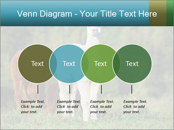 0000071447 PowerPoint Templates - Slide 32