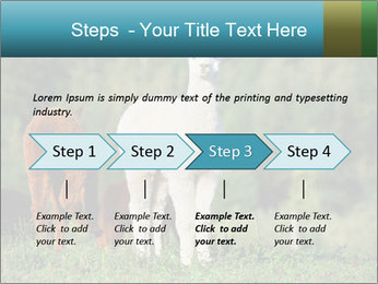 0000071447 PowerPoint Templates - Slide 4