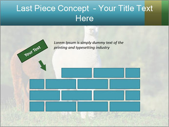 0000071447 PowerPoint Templates - Slide 46