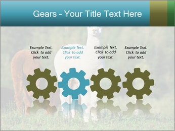 0000071447 PowerPoint Templates - Slide 48