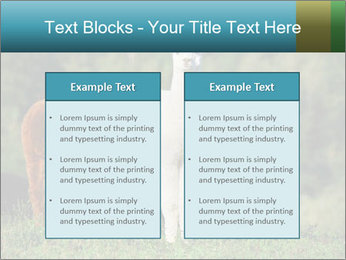 0000071447 PowerPoint Templates - Slide 57