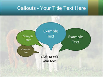 0000071447 PowerPoint Templates - Slide 73