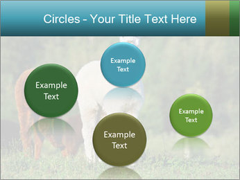 0000071447 PowerPoint Templates - Slide 77