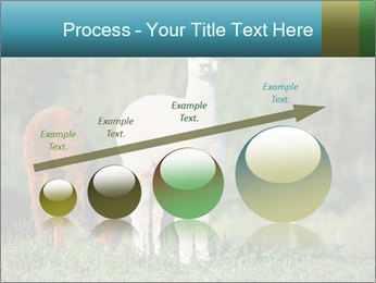 0000071447 PowerPoint Templates - Slide 87